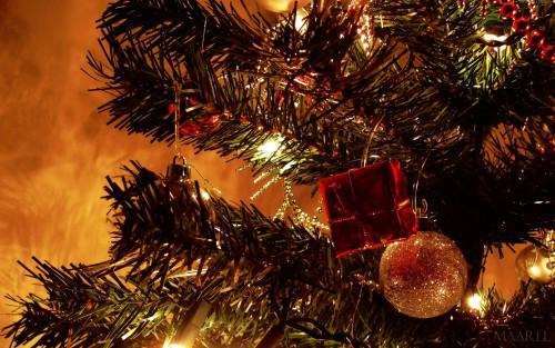 440172_Christmas-Eve